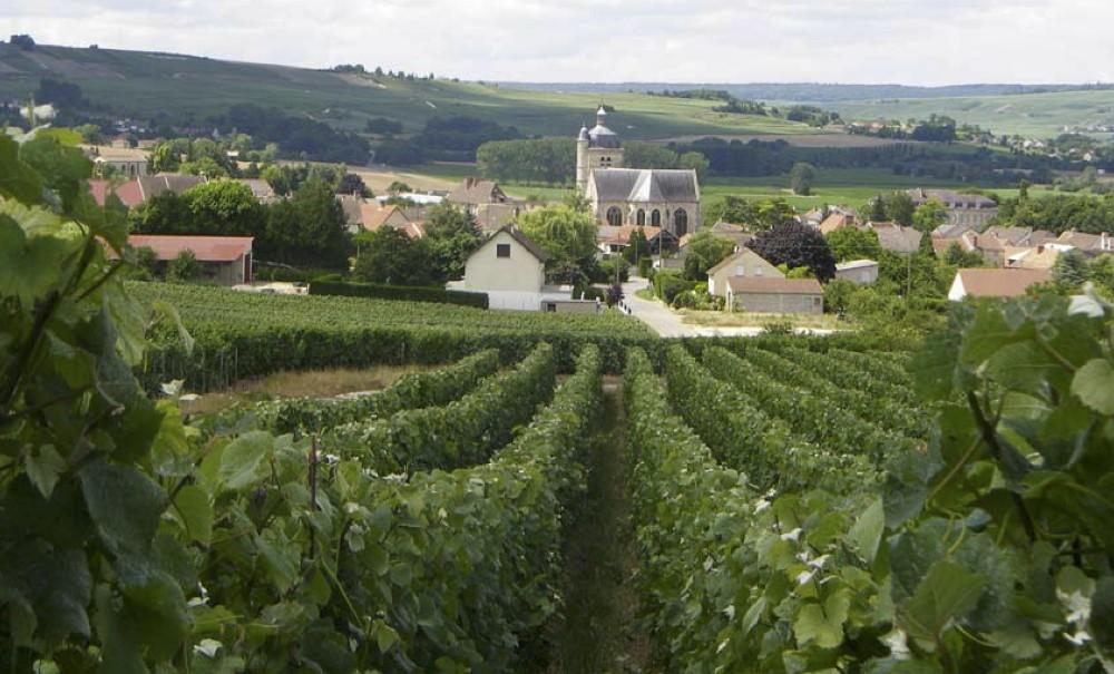 Hervé Mathelin – Troissy – Vallèe de la Marne
