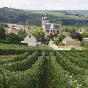 vigneron Hervé Mathelin – Troissy – Vallèe de la Marne